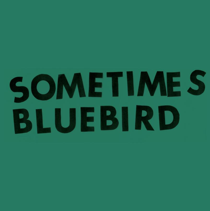 Sometimes Bluebird